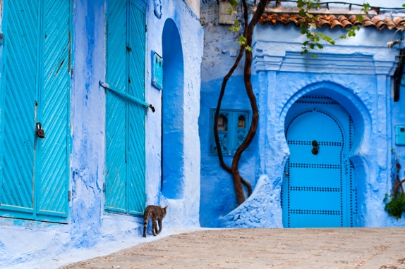 Excursion privada a Chefchaouen desde Tanger